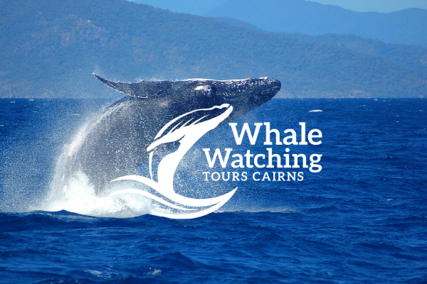Cairns local Deals | Whale Watching Tours Cairns
